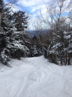 Entrance to the Alexandria Ski Trail on Cardigan Mountain